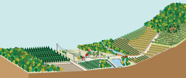 Exemplo de uma propriedade rural de acordo com a legislação ambiental.